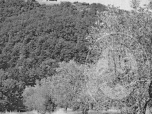 Immagine di GUALDO CATTANEO (PG) FRAZIONE POZZO - LOC. CONTEA LOTTO 3