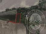 Immagine di lotto  3 - terreni di mq. 5.303,22 (1,69 bm) posti in zona golenale San Benedetto Po Via Argine Po Nord