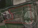 Immagine di Lotto 4 - terreni di mq. 101.577,06 (32,37 bm) San Benedetto Po (MN) in Via Cà Vecchia
