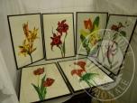 Immagine di Lotto formato da n 6 quadri con cornice, a firma Giandomenico, raffiguranti fiori, di mis.60x40cm