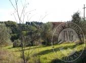Fabbricati rurali a CASOLE D'ELSA - Lotto 1