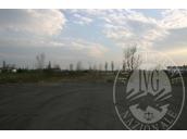 Piena propriet� di terreni edificabili siti in Comune di Concordia sulla Secchia (MO), Via Provinciale per Mirandola (MO) (Lotto 2).