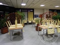 Immagine della gallery